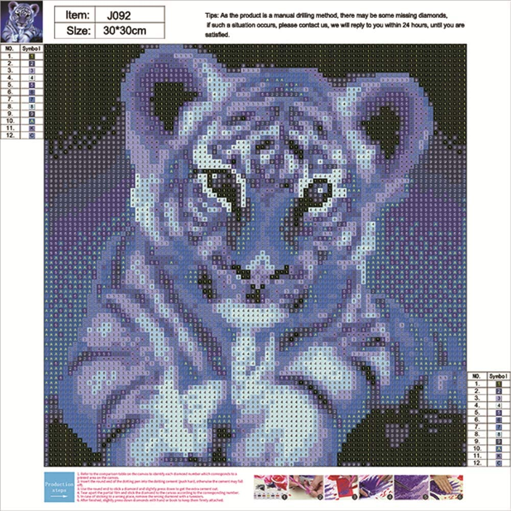 DIY 5D Diamond Painting by Number Kits feilin Full Drill Diamond Embroidery Kit Cross Stitch Painting Arts Craft Supply Home Wall Decor Little Tiger 30x30cm
