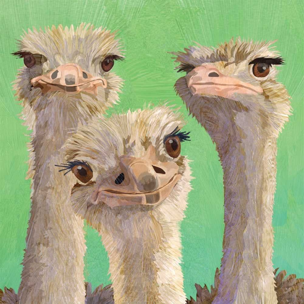 Paperproducts Design 1252789 Beverage Napkin, Patti Gay/Two Can Art, Ostrich Amigos