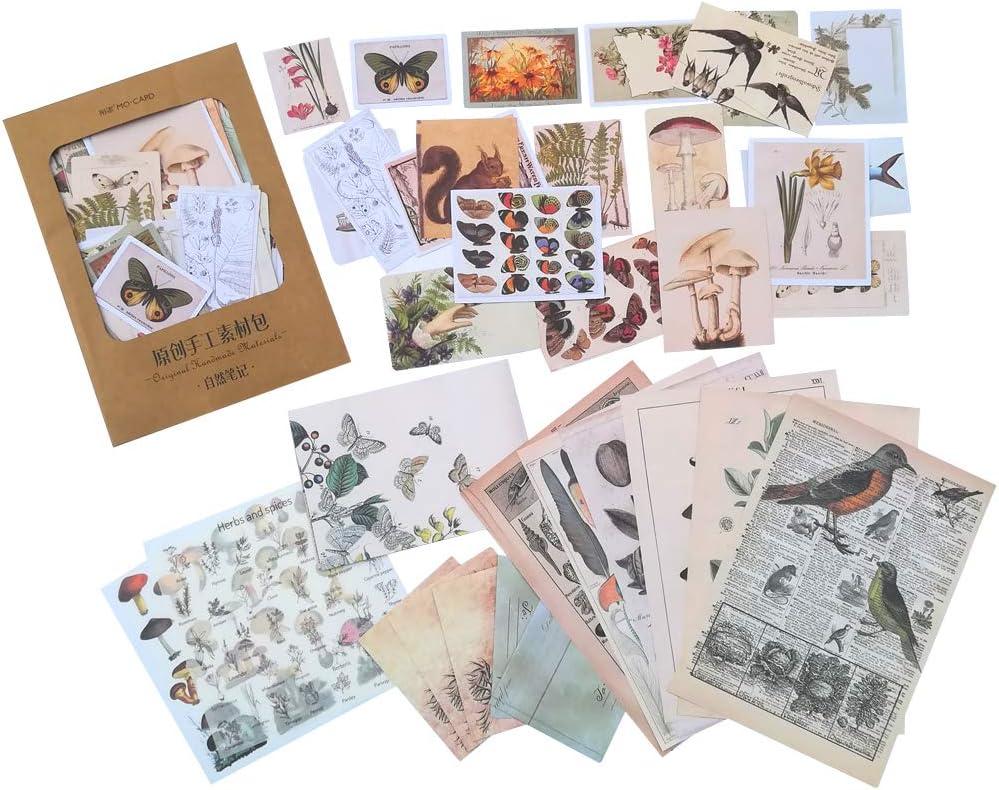 Vintage Paper Sticker Set Nature Plant Floral Animal Bird Butterfly Mushroom Decorative DIY Label for Scrapbooking Planner Album Art Craft Diary Journal