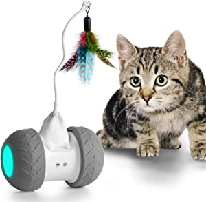Robotic Cat Toy Interactive, Automate Kitten Toy Ball USB Rechargeable 2000mAh Large Capacity Battery Working 7-14 Days, Auto 360 Degree Rotating Attached with Feathers, All Floors & Carpet Available