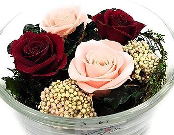 Ganz und zu Extrem Rosen-te-amo Echte Blumen-Strauß in Sandra Rich Vase (13,5 cm #MF_02