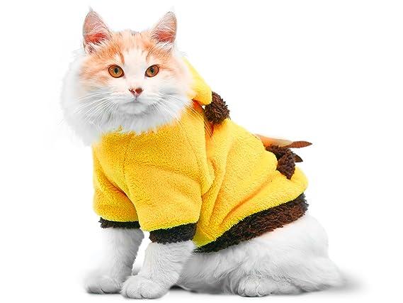 Amazon.com: PLS mascota disfraz de Halloween Disfraz de ...