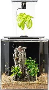 EcoQubeC Aquarium - Desktop Betta Fish Tank For Living Office And Home Décor