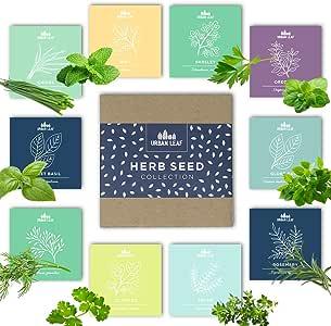 Amazon Com Herb Garden Seeds Kit For Planting Non Gmo