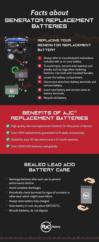 Batterie Briggs /& Stratton B193043GS 12V 18Ah G/én/érateur Ce Produit est Un Article de Remplacement de la Marque AJC/®