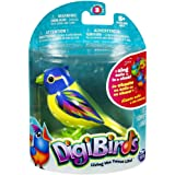 Composant Display   Digibird/Bague   Collection 4   Multicolore