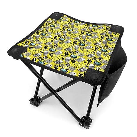 Magnificent Amazon Com Folding Camping Stool Portable Outdoor Mini Machost Co Dining Chair Design Ideas Machostcouk