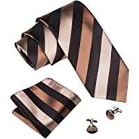 Barry.Wang Mens Ties Classic Stripe Tie Set for Men Silk Woven