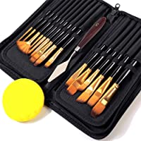 Stathm Artist Paint Brush Set - Professional Painting Set, includes 16Pcs Paint Brush with Case, Paint Knife and Art…