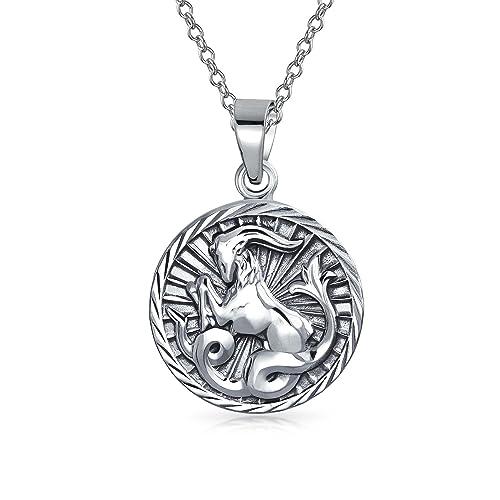 faa9696372bf Capricornio Signo del Zodíaco Astrología Ronda Colgante medallón Collar de  Plata Esterlina  Amazon.es  Joyería