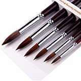GP Artist Paint Brushes set-6pcs Sable Hair Round Point Tip Paint Brush Set for Watercolor/Oil/Acrylic/Crafts
