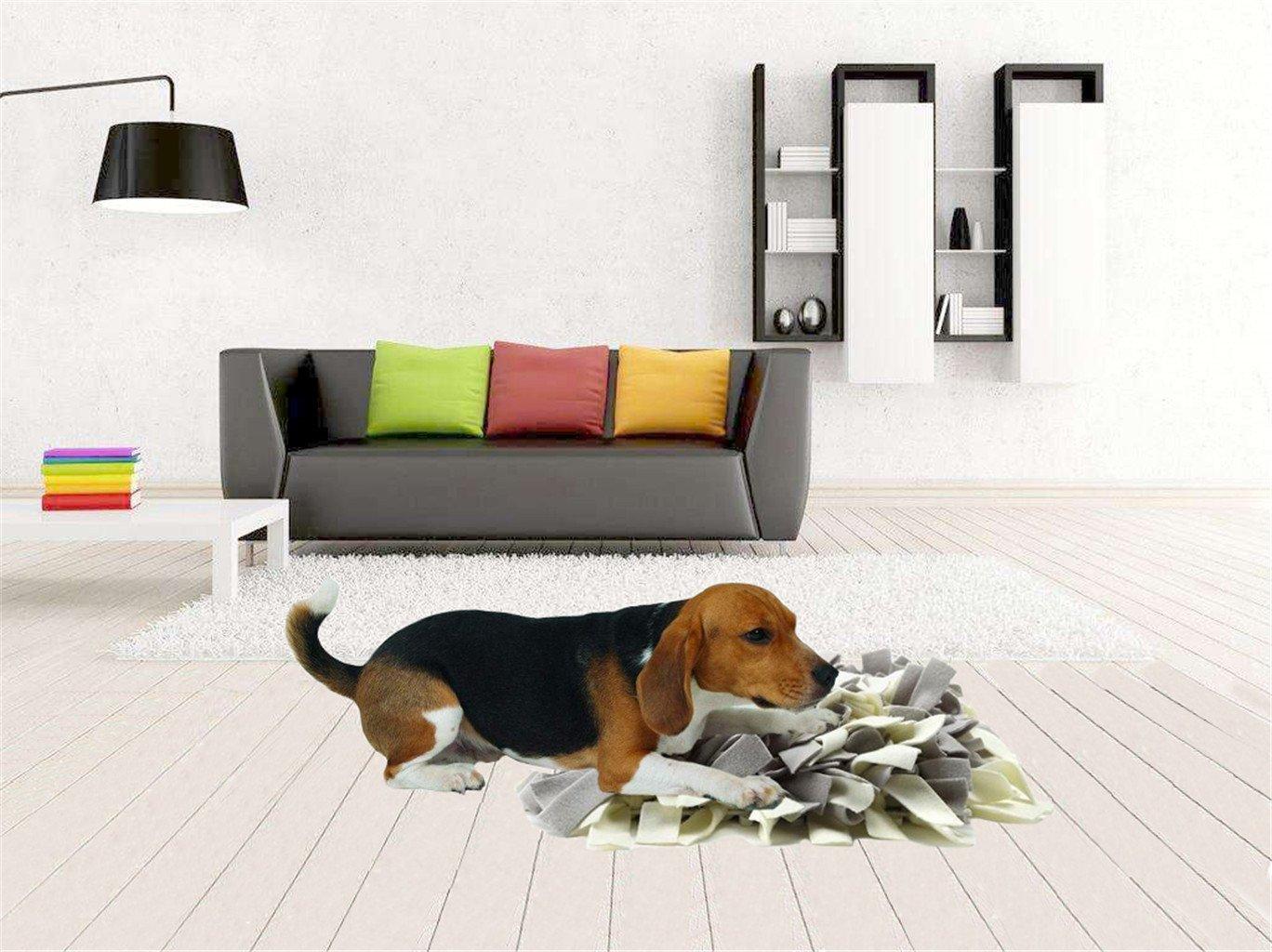 Tee-Mo - Alfombrilla de entrenamiento para mascotas, para aliviar el estrés y la intemperie, comedero para perros: Amazon.es: Productos para mascotas