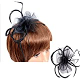 DAYNECETY Feather Fascinator Hat Hair Clip with Headband For Womens Bride Party Wedding Derby Hat Decro Mother Gift