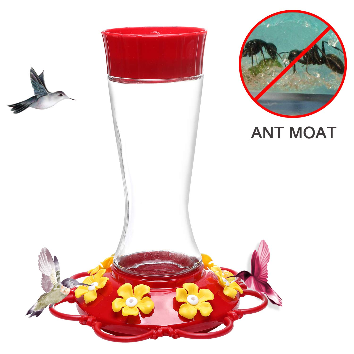 Don Hamilton Hummingbird Feeder,Glass Hummingbird Feeders with Ant Moat for Outdoors,20 Ounce,Red