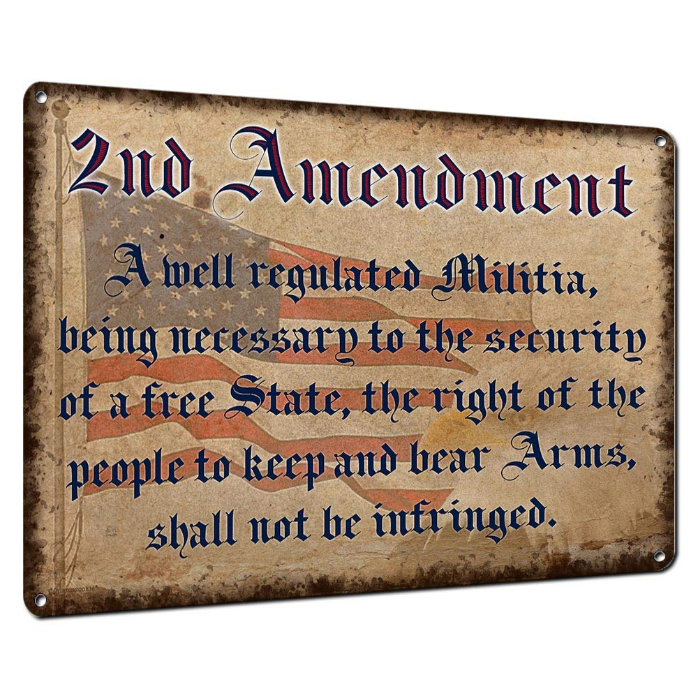 2nd Amendment, 9x12 Inch Metal Sign, Patriotic Americana Wall Decor for Gun Owners, Firing Ranges, Gun Room, Office, Gifts for Veterans, Active Military, Law Enforcement, NRA Members, RK3111 9x12