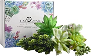 LIATODRAW Mini Artificial Succulents Plants Faux Succulent Fake Succulent - 6 Pcs Unpotted Faux Flocking Succulent Fake Plants for Home and Garden Arrangement Decoration