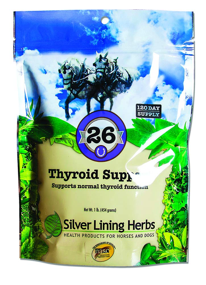 Thyroid Support | Supports Normal Horse Thyroid Function | May Also Help with Equine Weight Management | Made in the USA Of Natural Herbs by Silver Lining Herbs