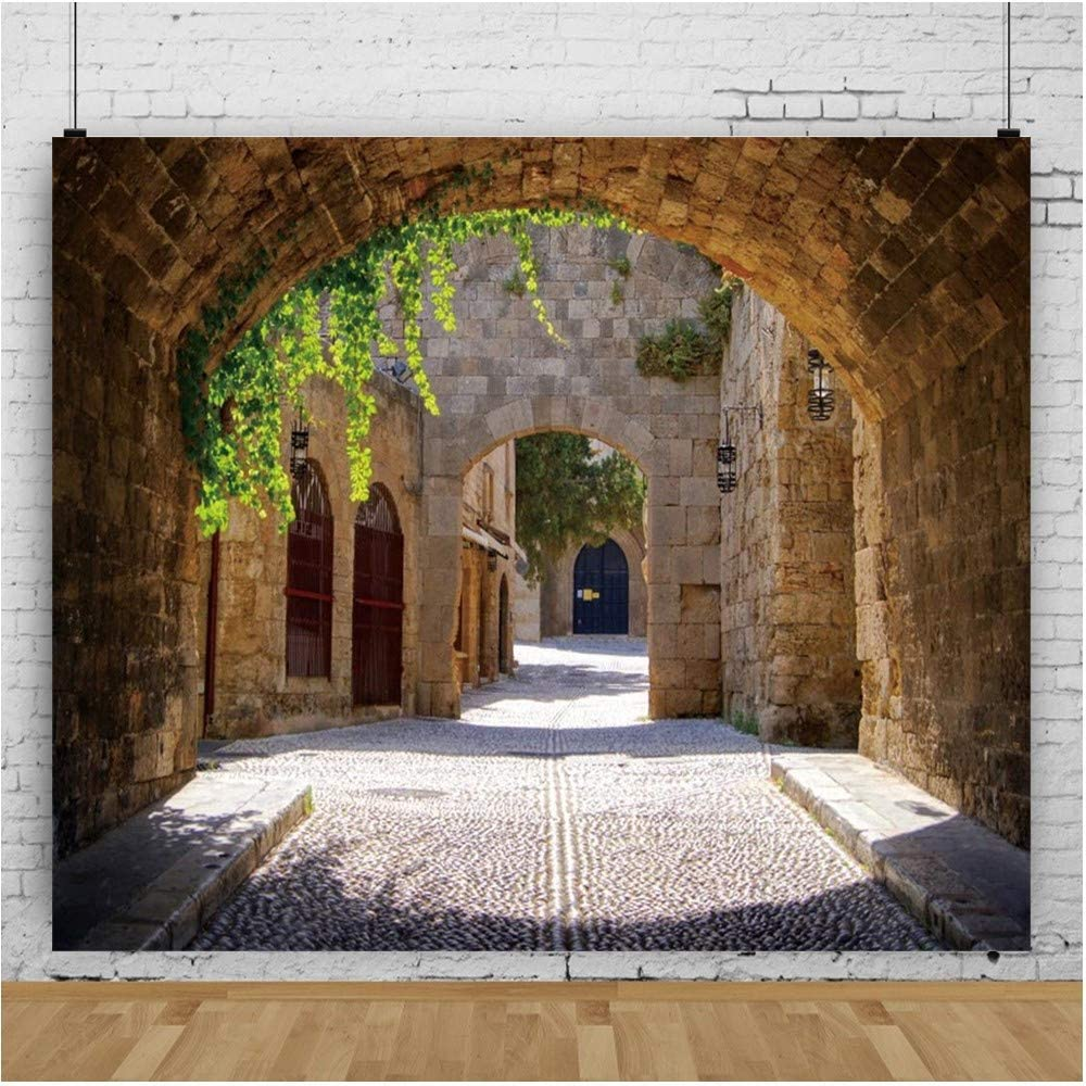 Medieval 8x10 FT Photo Backdrops,Old Stone Street with Stone Passage Estonia Medieval Town Heritage Photo Art Background for Baby Birthday Party Wedding Vinyl Studio Props Photography Grey Red Brown