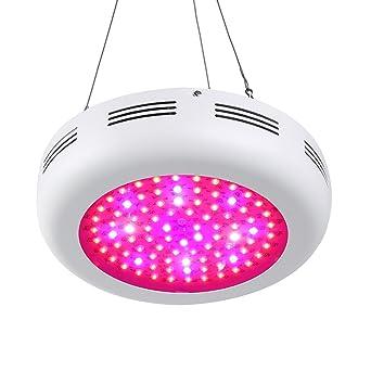 Roleadro UFO LED Lampe Horticole 270W, Led Plante Lampe Culture de ...