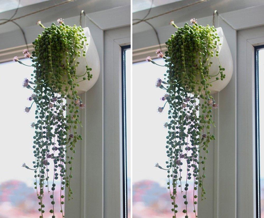 Pot De Fleurs Artificielles Smater Cactus Pot De Fleurs Mini Rond