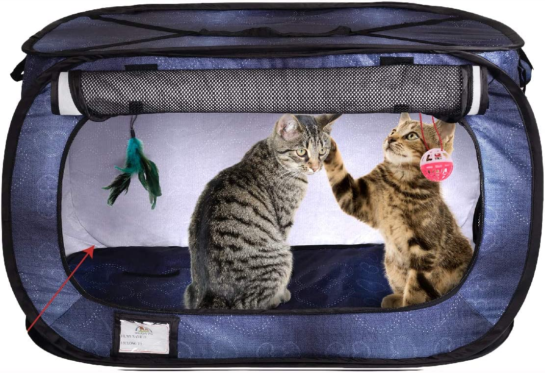 Best Cat Carrier For Car Travel 15
