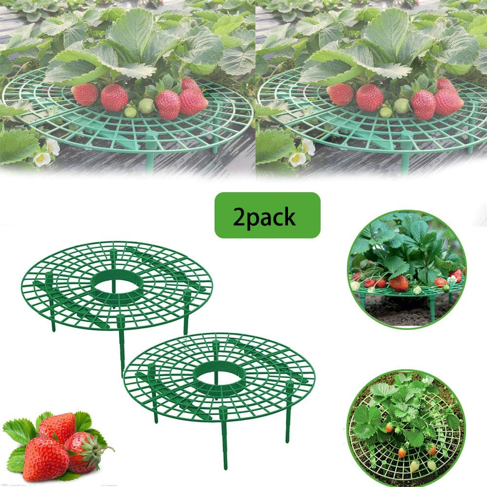 Quvivior Strawberry Plant Support Strawberry Growing Racks Keeping Fruit Elevated to Avoid Ground Rot Plant Climbing Rack Gardening Planting Rack Plant Climbing Vine Pillar Garden Stand 2pack