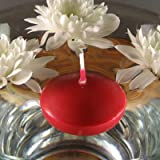 Bolsius Floating Candles - 10 Pack (Red) - 103632052241