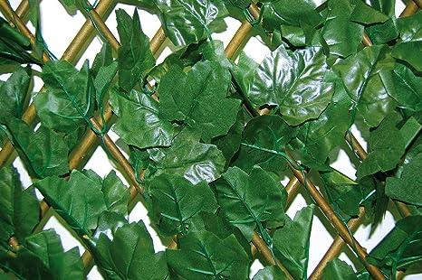 Steccato Estensibile Giardino : Tenax a divy tens hedera traliccio estensibile ricoperto
