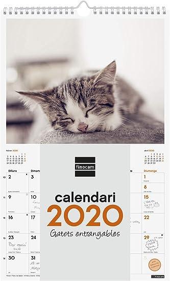 Finocam - Calendario de pared 2020 Imágenes Espiral 25x40 Gatitos catalán: Amazon.es: Oficina y papelería