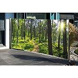 seitenmarkise mit fotodruck s dsee 160 x 300 cm links sichtschutz windschutz neu. Black Bedroom Furniture Sets. Home Design Ideas