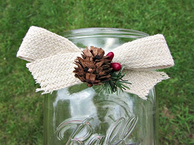Amazon Christmas Mason Jar Sleeves Pine Pinecone Red Berry