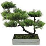 "18"" Decorative Artificial Japanese Bonsai Tree in Distressed Box"