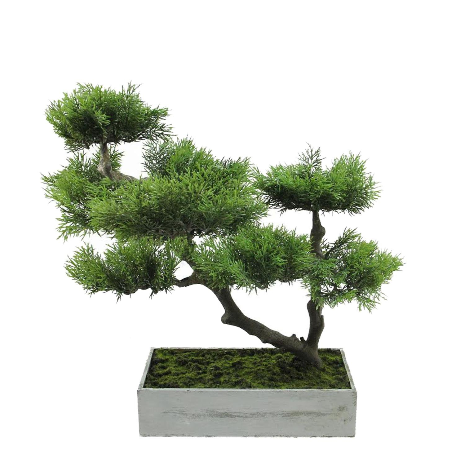 5 artificial bonsai trees to have at home. Black Bedroom Furniture Sets. Home Design Ideas