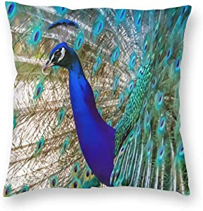 ~ Beautiful Cobalt Blue Turquoise Peacock Home Decor Throw Pillow Cover, Lightweight Soft Plush Square Decorative Pillow Case 18x18 Inch Cushion Cover, Sham Stuffer, Machine Washable