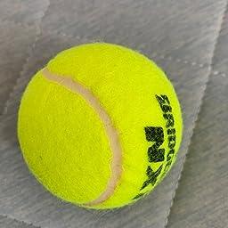 Amazon Bridgestone ブリヂストン テニス ボール Nx1 4個入り 15 2缶 68球 セット anxa ブリヂストン Bridgestone プレッシャーライズド ボール