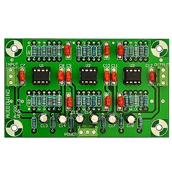 Amazon.com: ELECTRONICS-SALON A-300 estéreo Phono RIAA ...