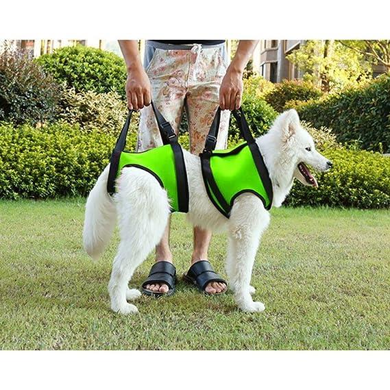 Arnés con asas para perro de Geekbuzz, para patas delanteras y traseras, para levantar perros viejos, heridos, inválidos, y como ayuda para subir y bajar ...