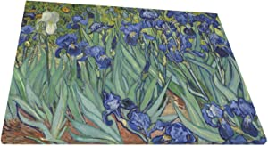 Abstract Wall Art Gallery Wall Decor, Irises Wall Paintings, Farmhouse Decor for the Home, Wall Pictures for Living Room Frameless Wall Hanging Decor Paintings 20x16 Inch