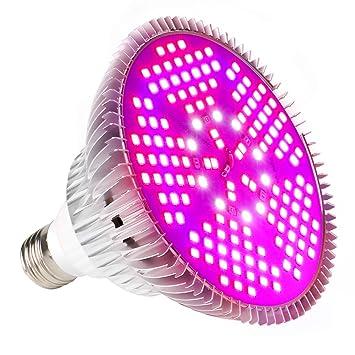 Bombilla LED de crecimiento, foco de crecimiento completo para suculentos, flores, semillas,