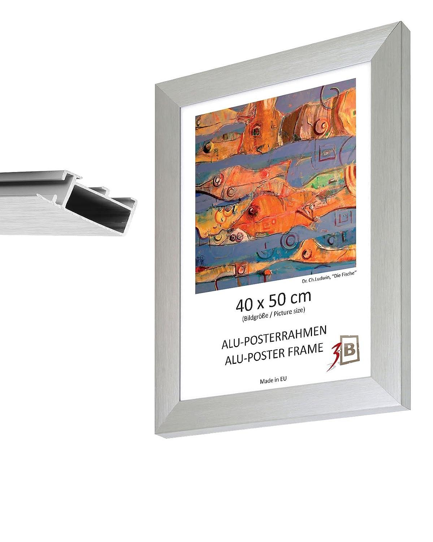 Aluminium Picture Frame 70 x 100 CM CLASSIC (B1)-Matte Silver Frame ...