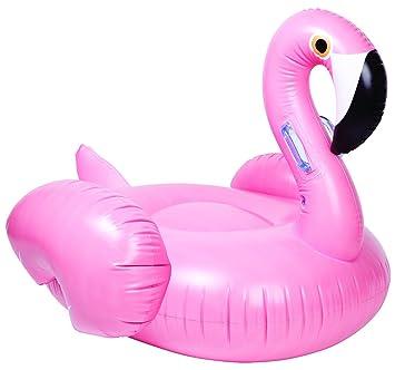 Amazon.com: Gigante Hinchable dorado Swan Pegasus piscina ...