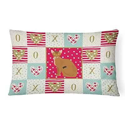 Caroline's Treasures CK5733PW1216 Abyssinian Cat Love Canvas Fabric Decorative Pillow, 12H x16W, Multicolor : Garden & Outdoor