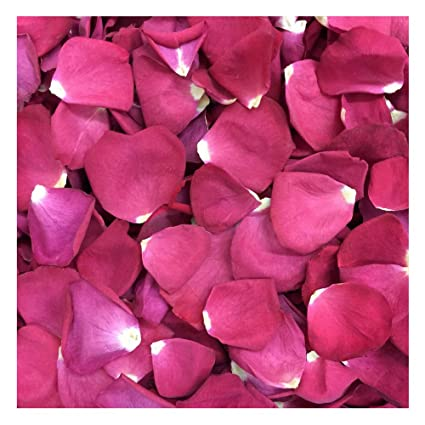 amazon com falling in love rose petals 120 cups preserved freeze