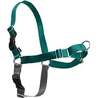 PetSafe Easy Walk Dog Harness, Teal, Small