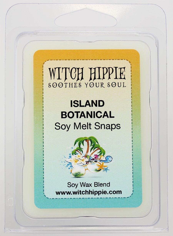 島植物香りつきないキャンドルCandle Tarts、6自然大豆ワックスキューブby魔女ヒッピー B073DLVQP1
