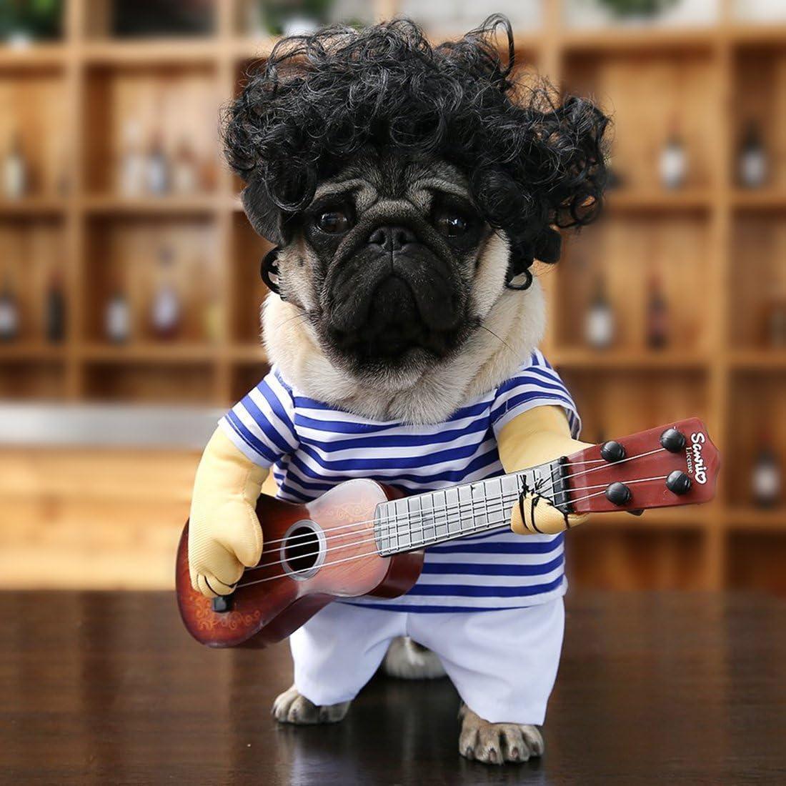 carlino costume cane divertente social