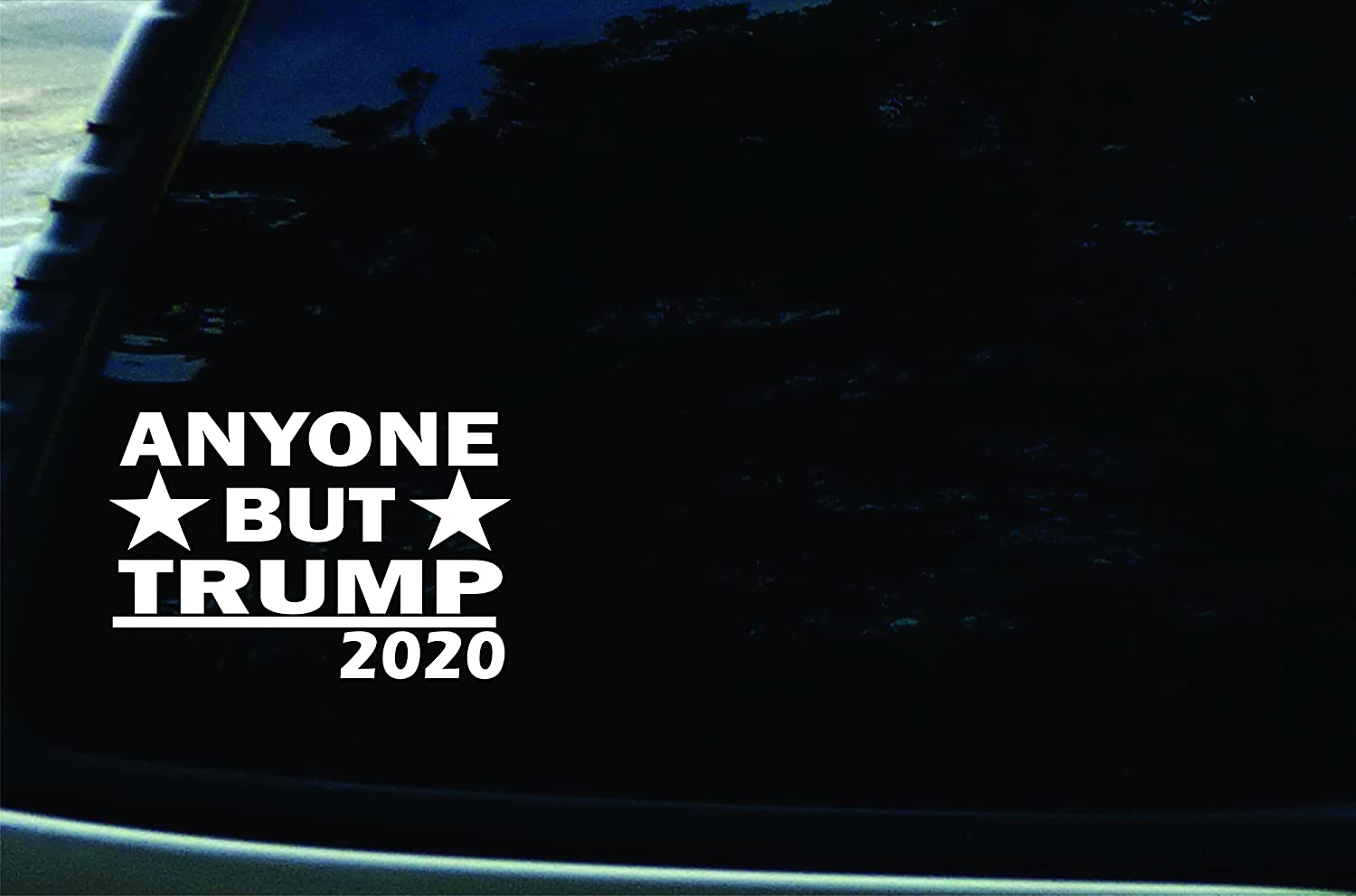 Fall 2020 Decals.Southern Fried Decals 6 X 4 Anyone But Trump 2020 Vinyl Die Cut Decal For Your Car Truck Laptop Window