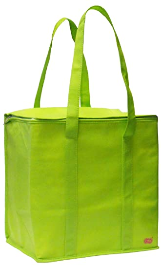 Amazon.com: Large Insulated Zippered Tote Bag (Lime Green ...