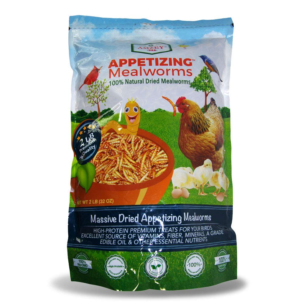 Appetizing Mealworms 2lbs-100% Non-GMO Dried Mealworms - High-Protein Meal Worm Treats -Perfect for Your Chickens,Ducks,Wild Birds,Turtles,Hamsters,Fish,and Hedgehogs ... by RUFF BOYZ