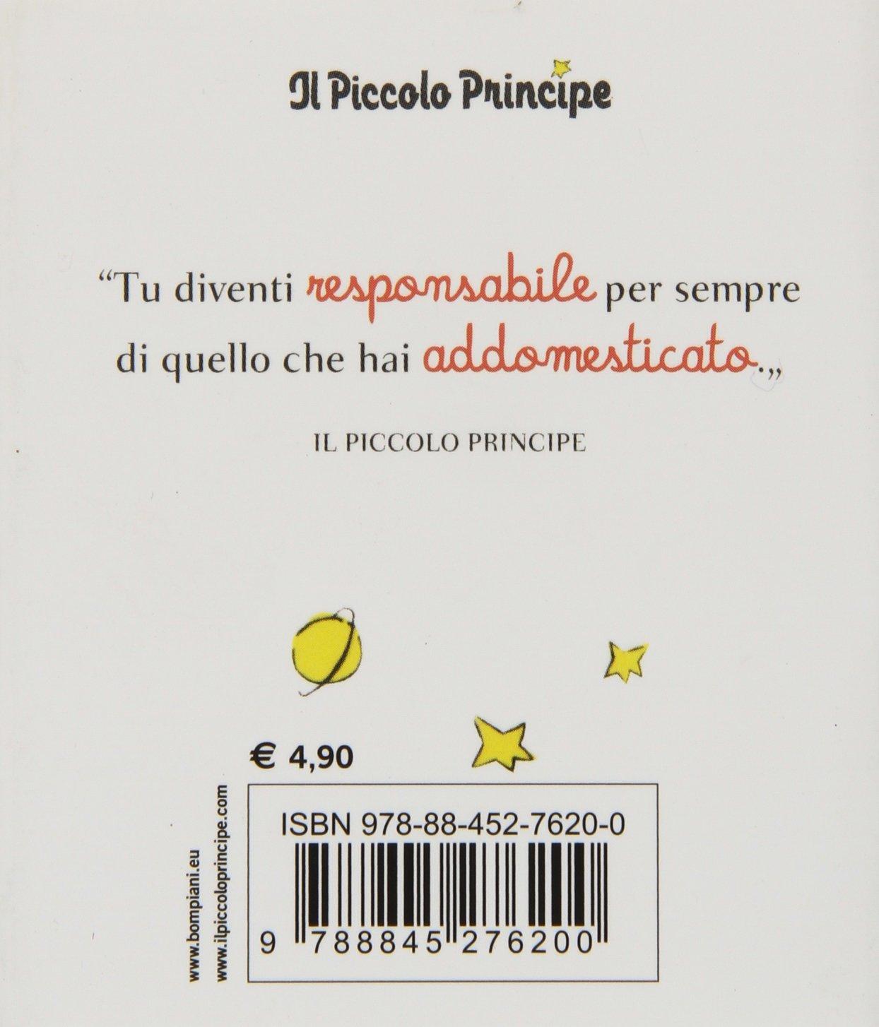 Molto frasi sull amicizia piccolo principe ka95 pineglen for Piccolo in francese